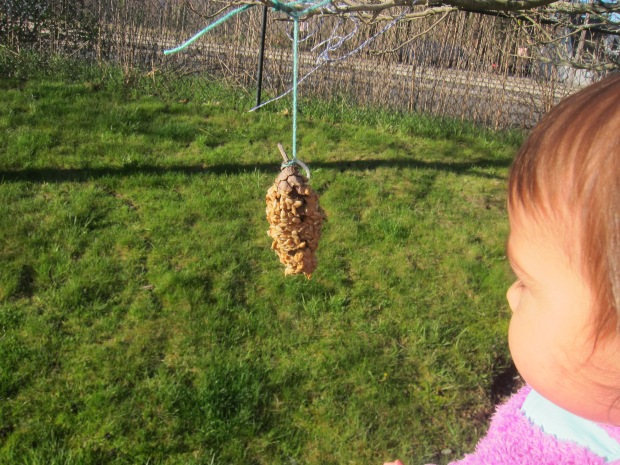 Easy Bird Feeder (14)