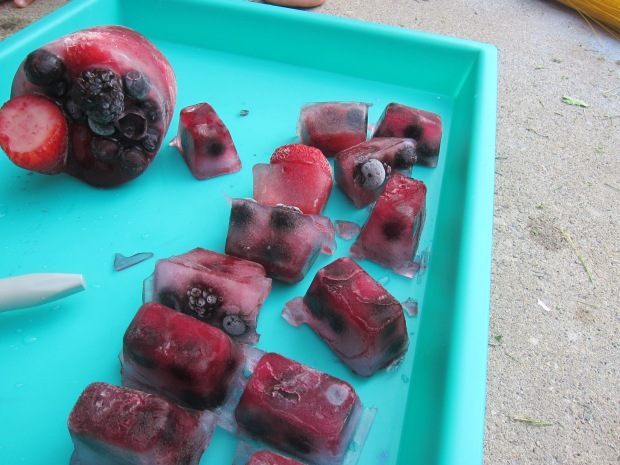 Frozen Berry Excavate (3)