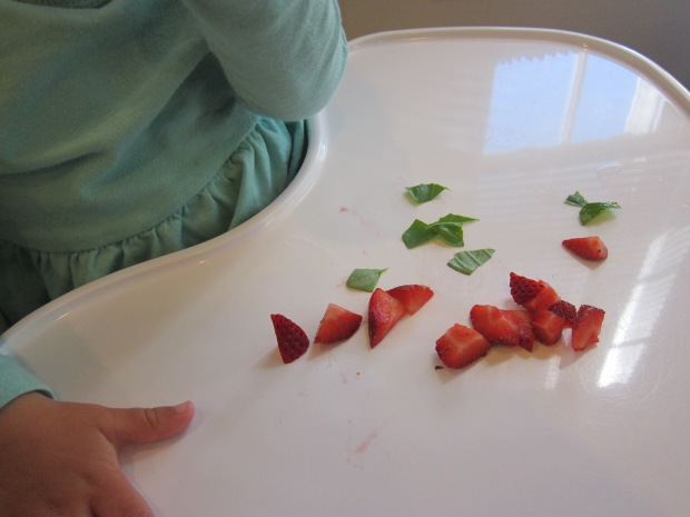 Pick Your Own Strawberries (5)
