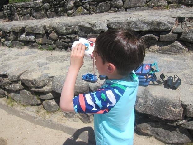 Safari Binoculars (9)