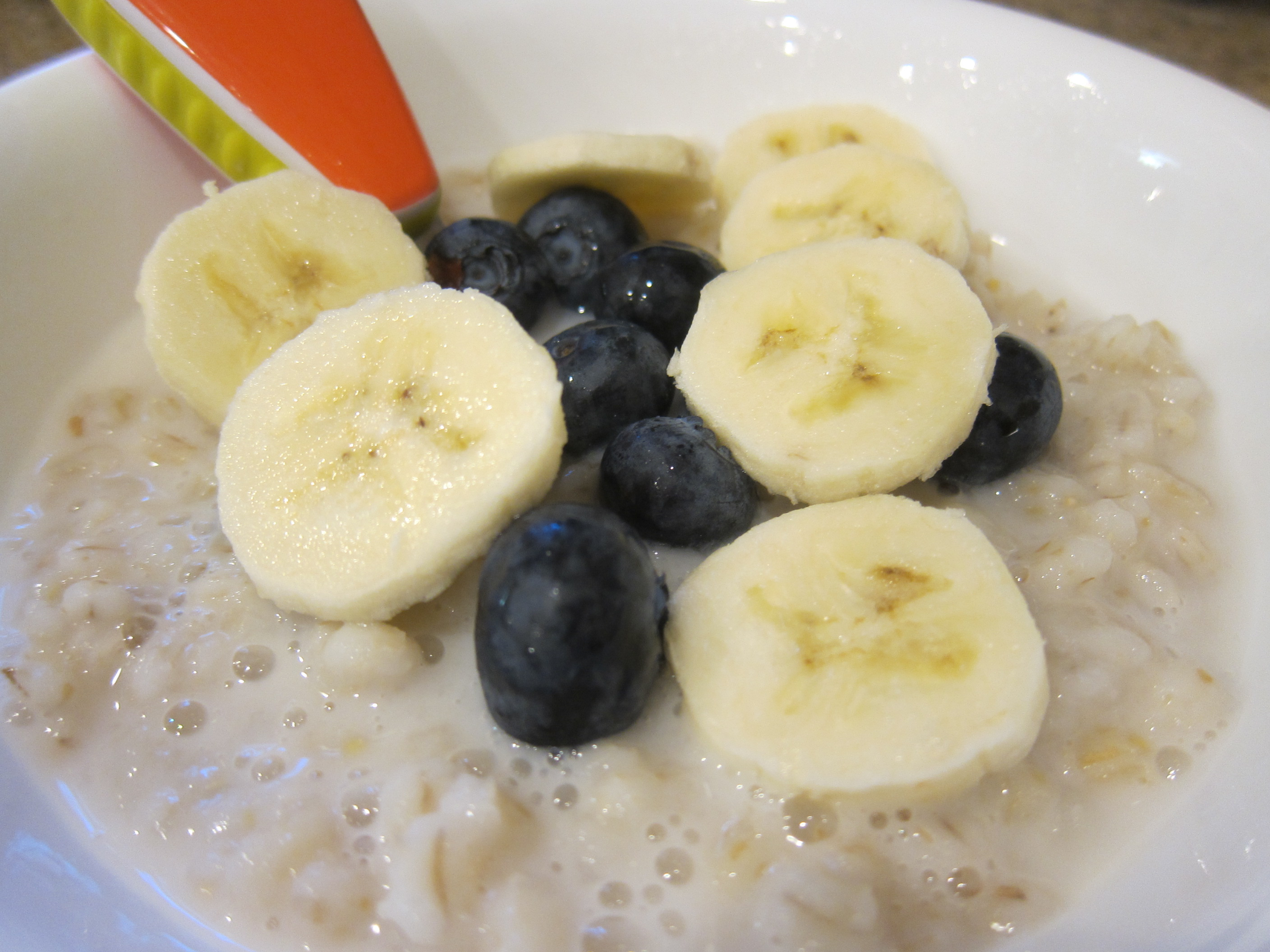 Barley with Blueberries (1)
