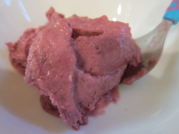 Blackberry Frozen Yogurt (1)