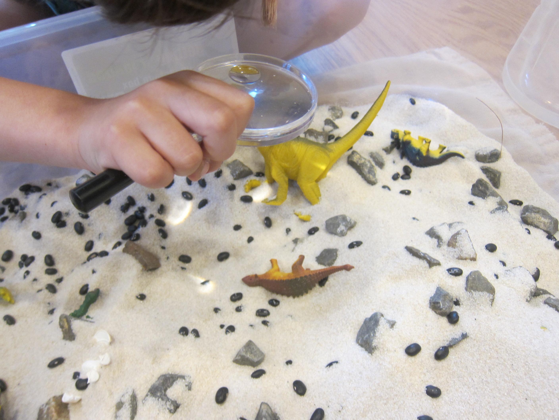 Dinosaur Sandbox (2)
