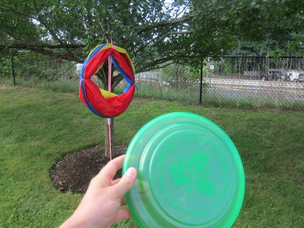 Flying Discs (1)