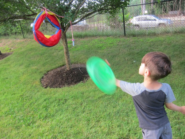 Flying Discs (6)