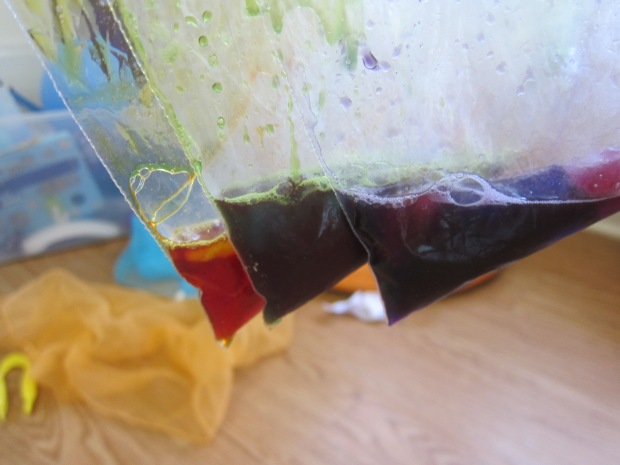 Ice Bags (8)