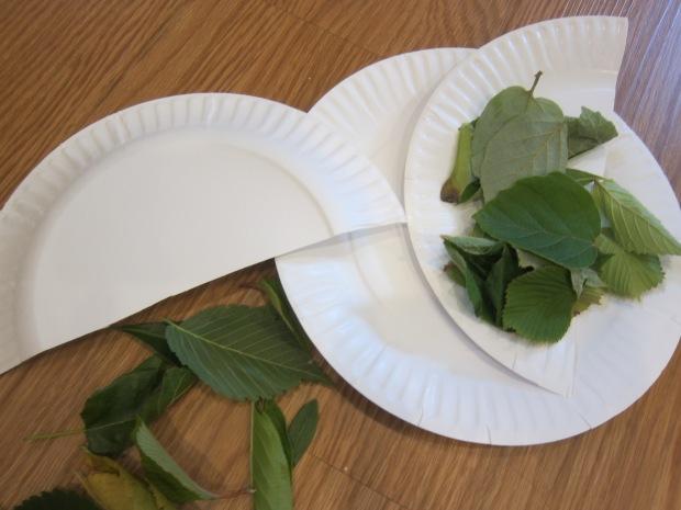 Leaf Mask (1)