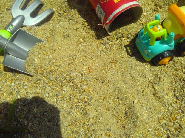 Sandbox Scene (5)