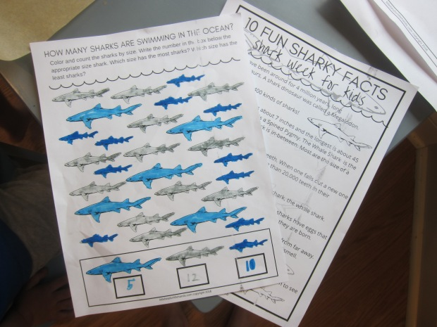 Shark Awareness (2)