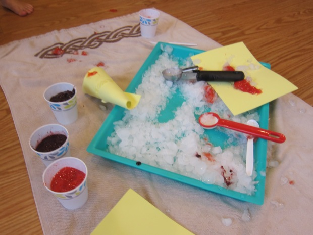 Sno Cone Creation Station (10)