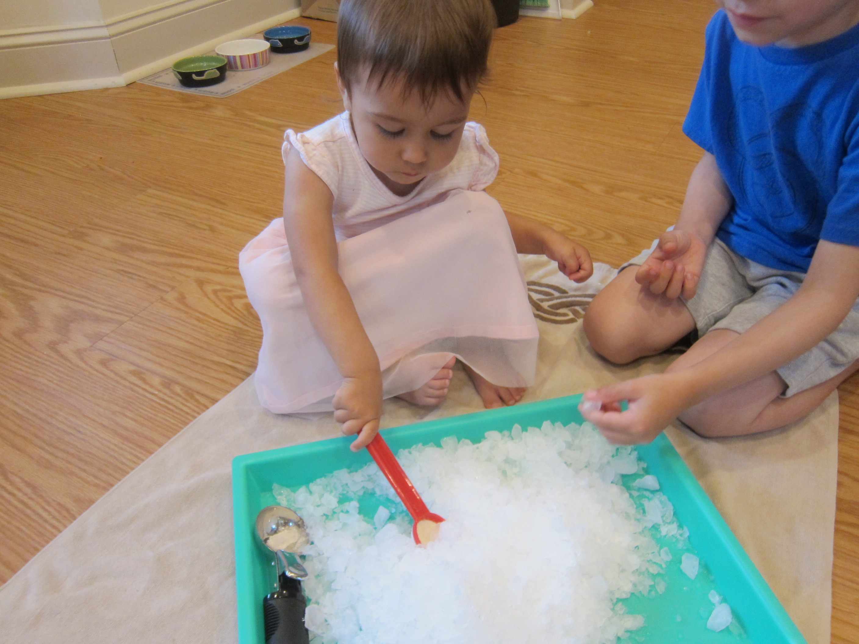 Sno Cone Creation Station (2)
