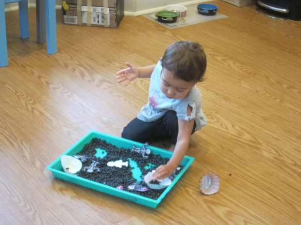 Black Bean Sandbox (7)