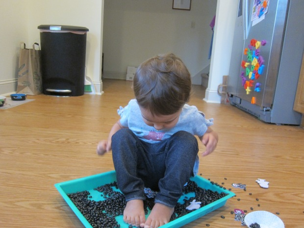 Black Bean Sandbox (8)