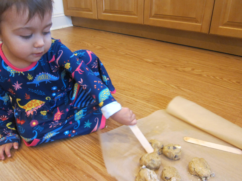 Cookie Log (4)
