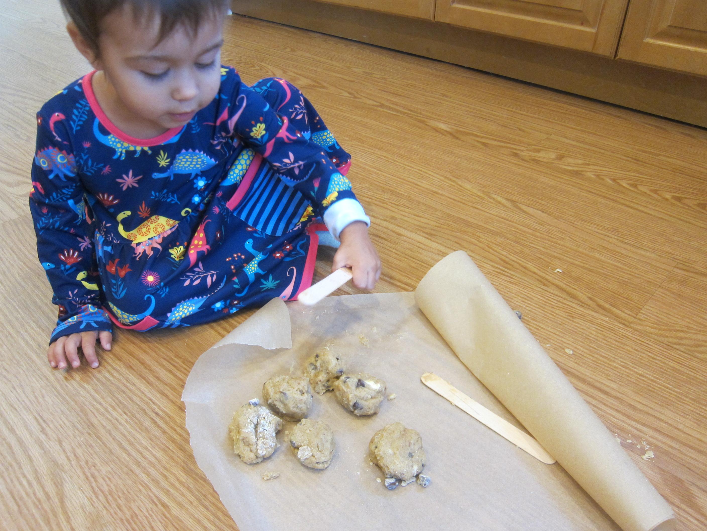 Cookie Log (5)