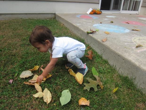 Leaf Scrunch (11)