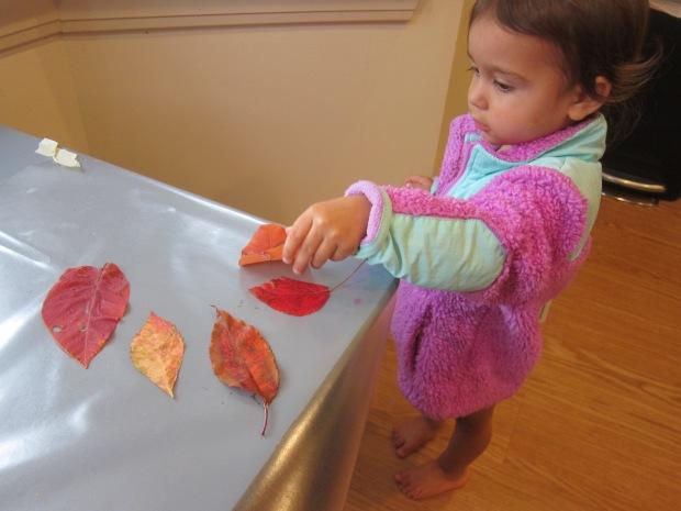 Leaf Scrunch (12)