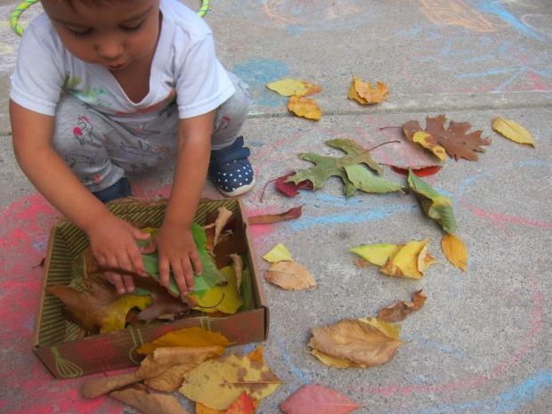 Leaf Scrunch (4)
