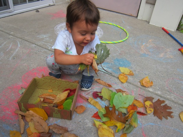 Leaf Scrunch (5)