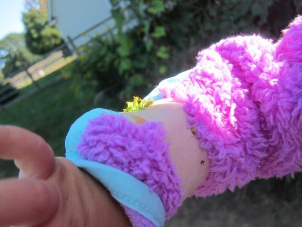 Nature Bracelet (1)