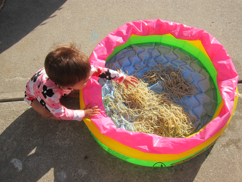Spaghetti Splash (1)