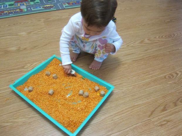 Maze Through Lentils (10)