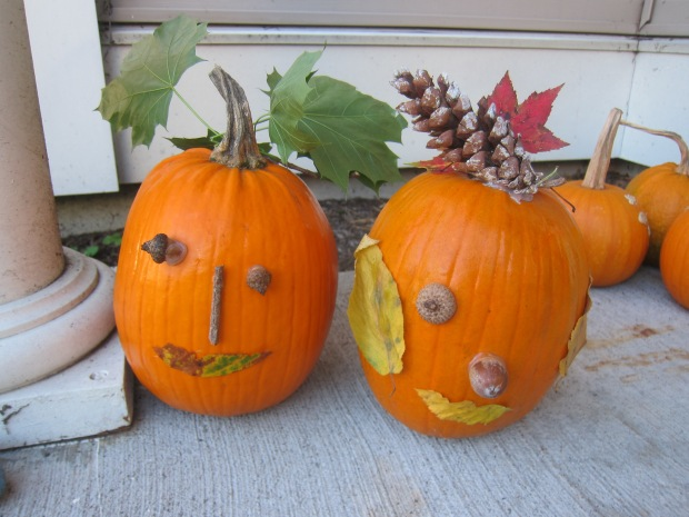 No-Carve Nature Pumpkins (10)