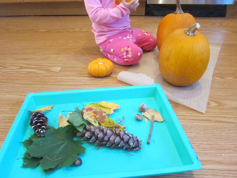 No-Carve Nature Pumpkins (3)