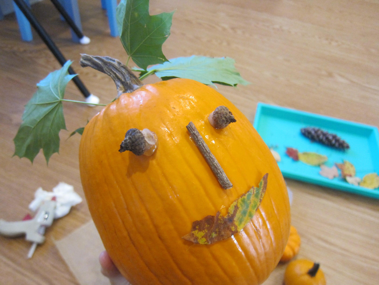 No-Carve Nature Pumpkins (6)