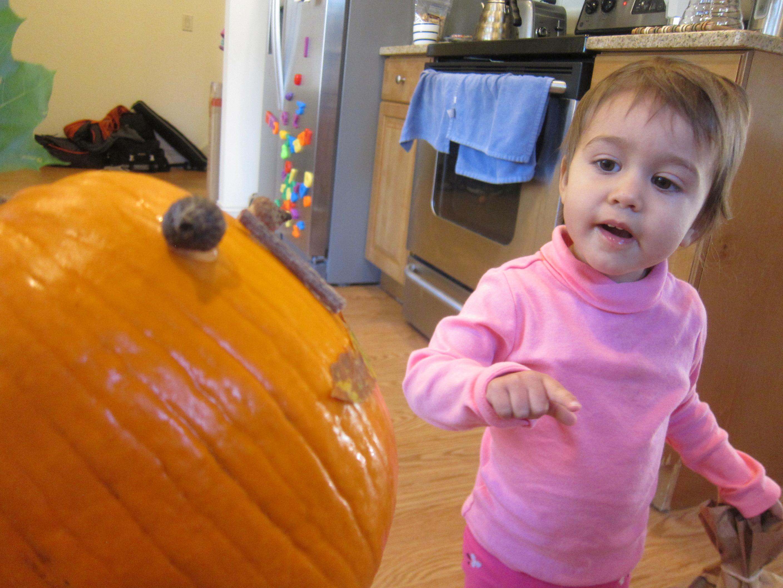 No-Carve Nature Pumpkins (7)