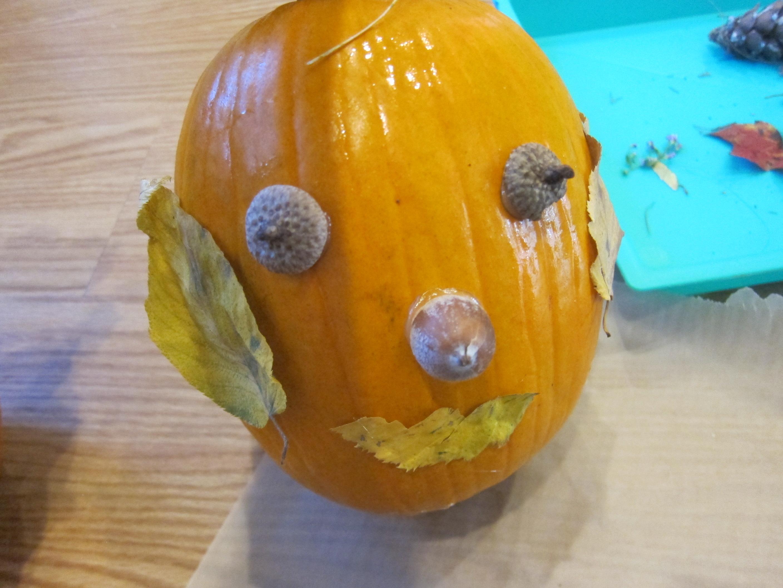 No-Carve Nature Pumpkins (9)