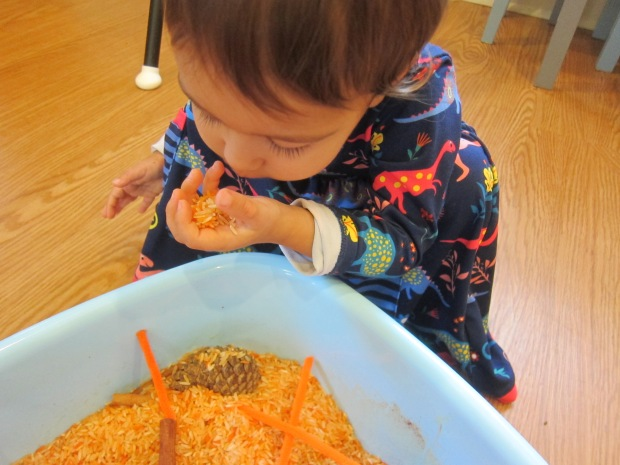 Pumpkin Scented Rice (11)