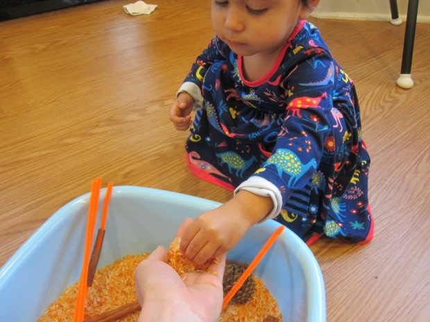 Pumpkin Scented Rice (4)