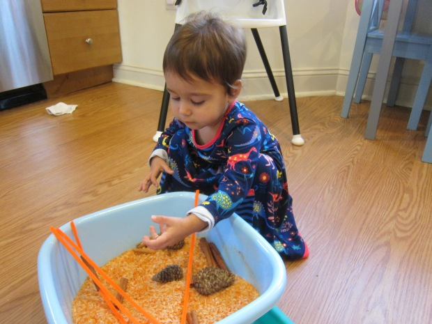 Pumpkin Scented Rice (5)