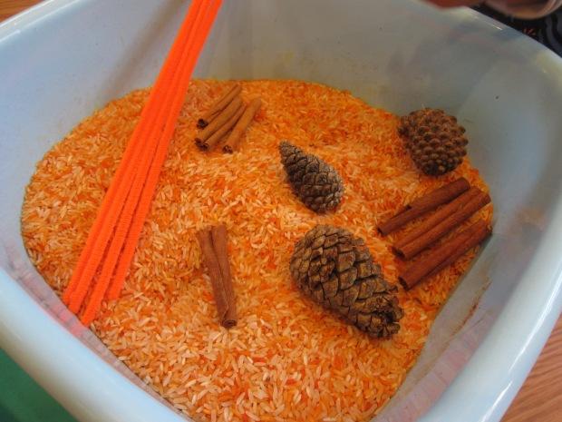 Pumpkin Scented Rice (6)