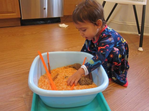 Pumpkin Scented Rice (9)