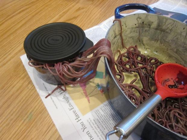 Spaghetti Potion (5)