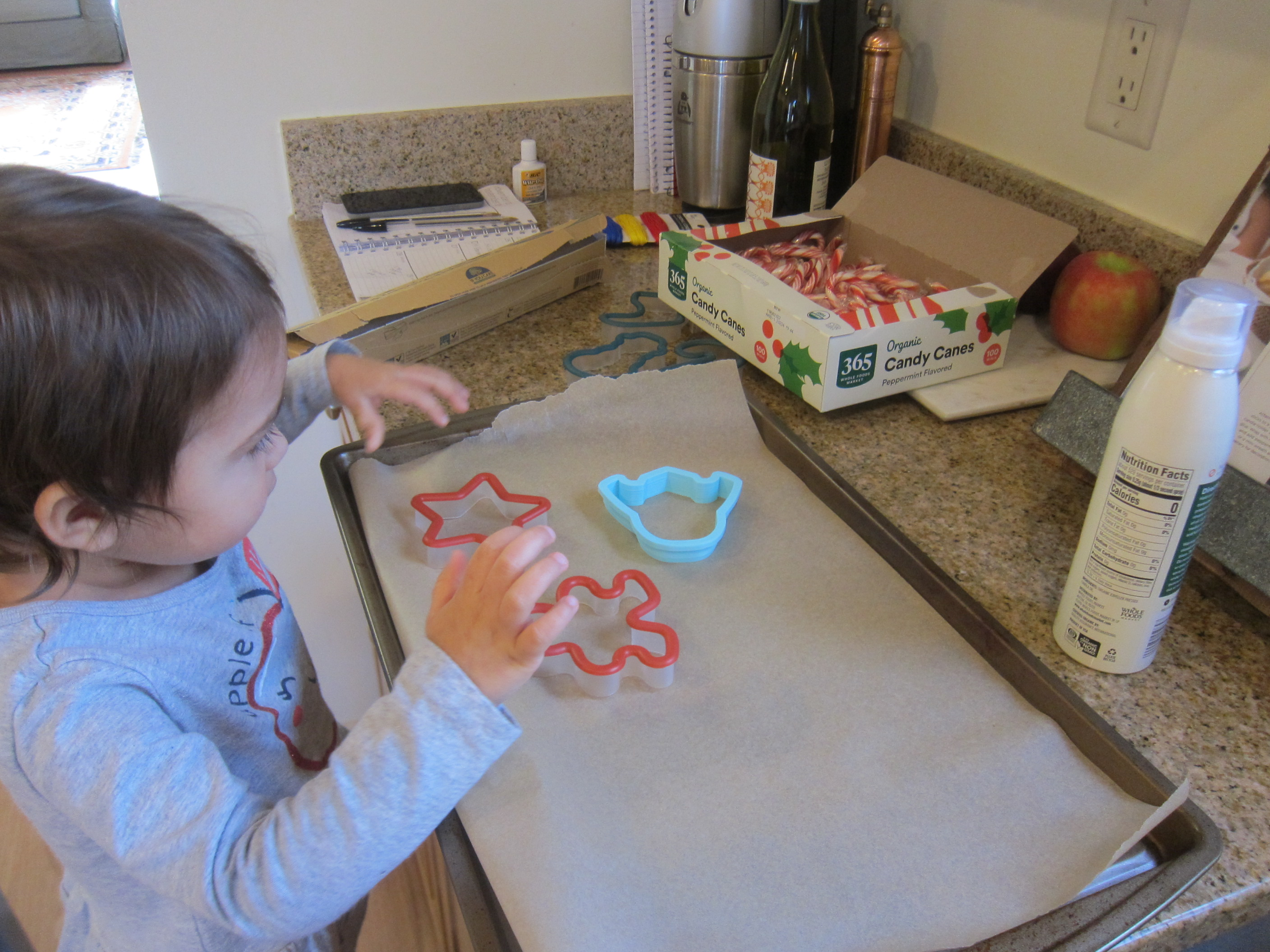 Candy Cane Ornaments (1)