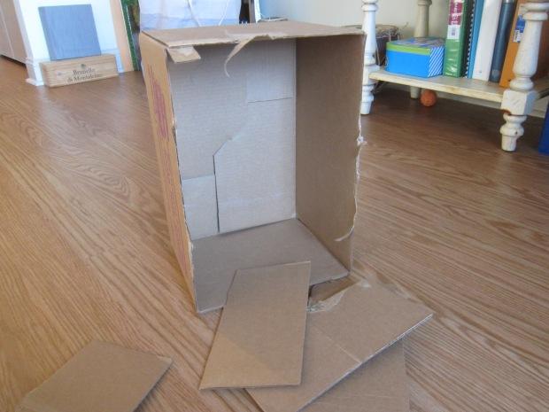 Cardboard Box Ramps (1)