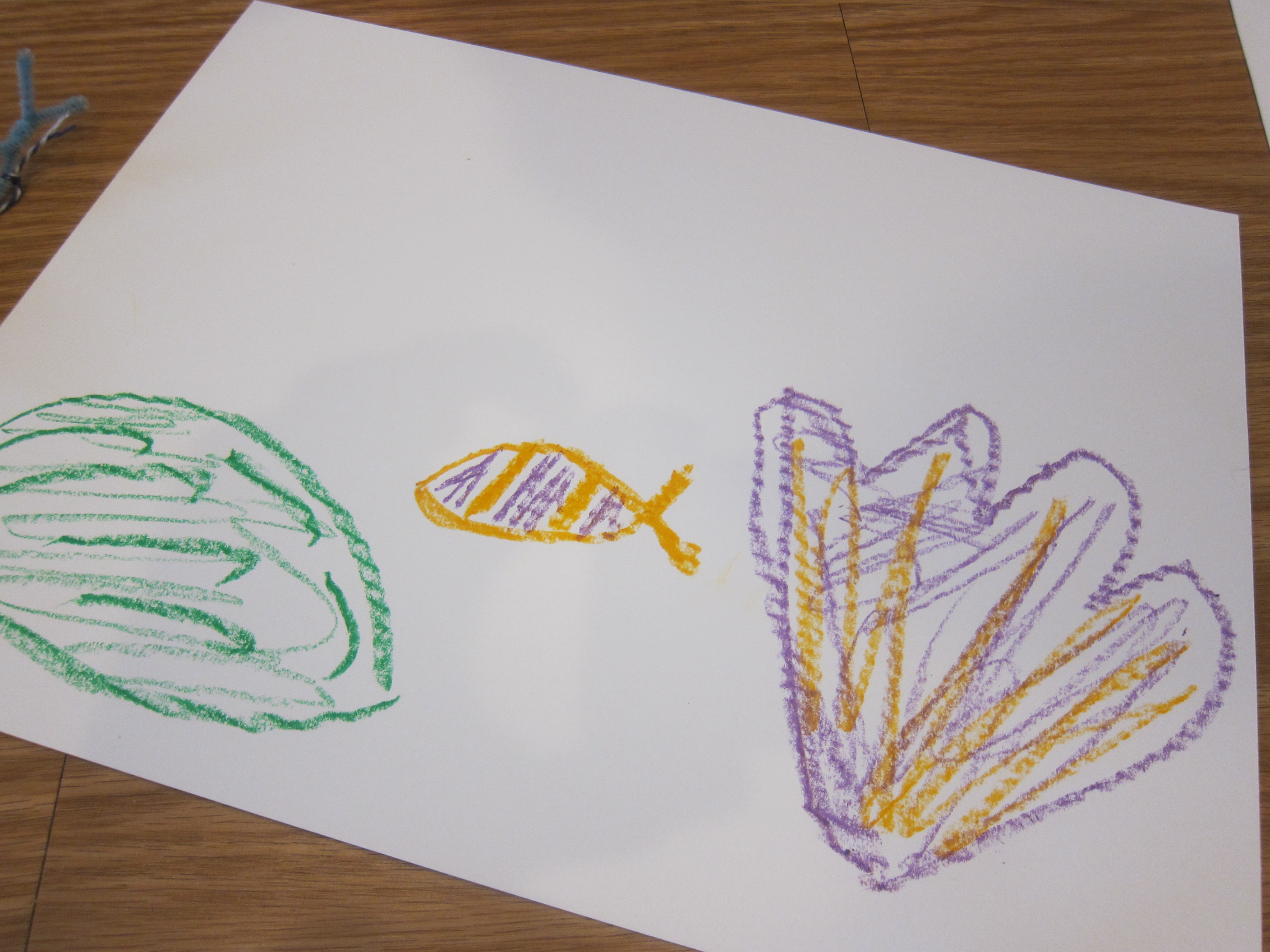 Coral Reef Creation Station (3)
