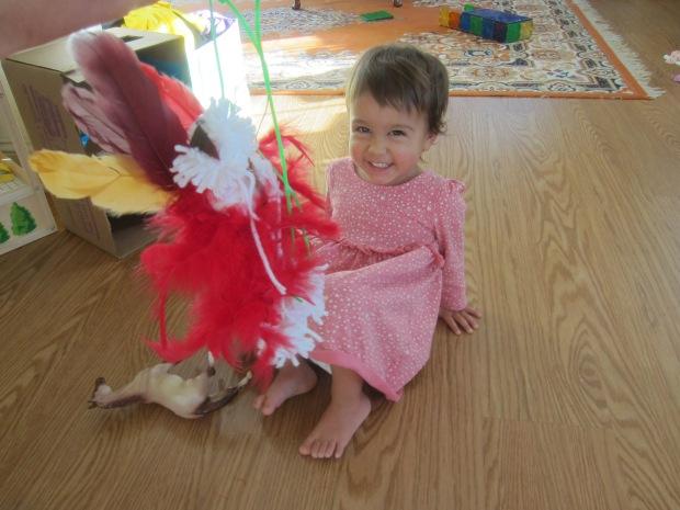 Dancing Turkey (10)
