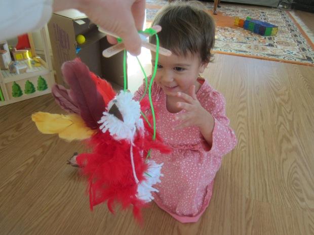 Dancing Turkey (8)
