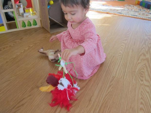 Dancing Turkey (9)