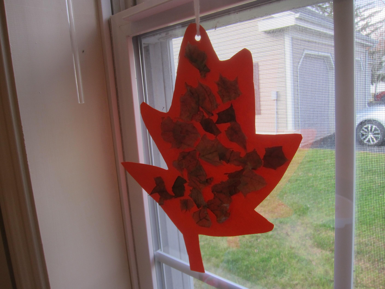 Dry Leaf Collage (9)