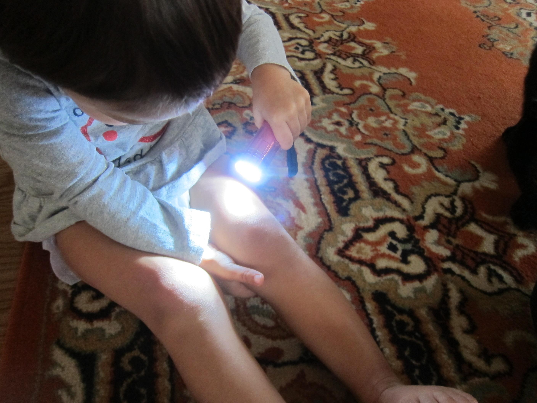 Flashlight Fun (4)