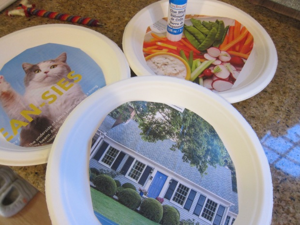 Puzzling Plates (1)