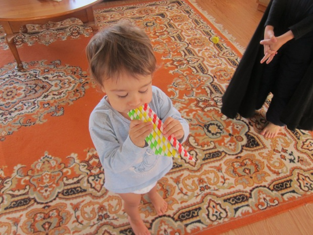 Straw Flute (8)