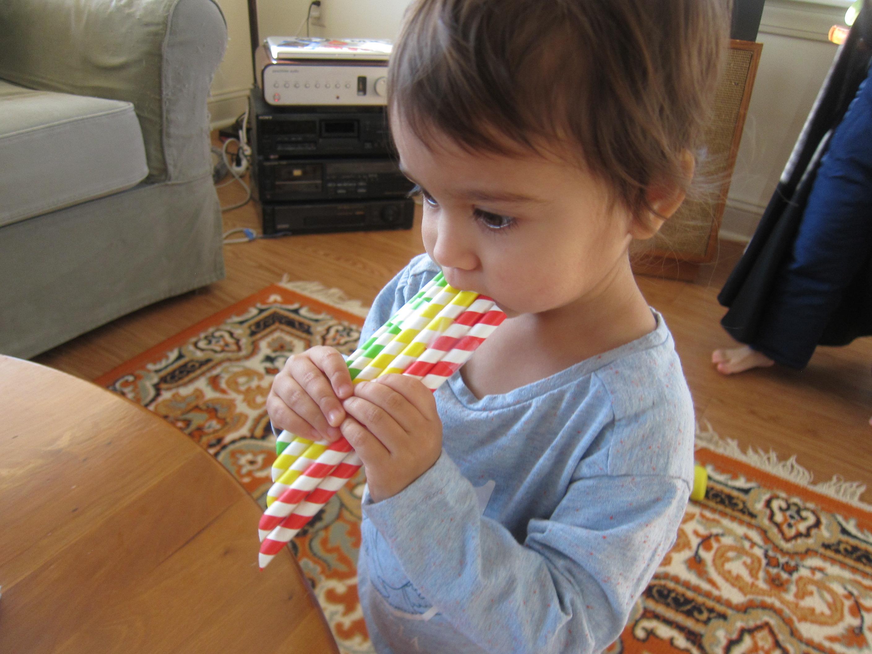 Straw Flute (9)