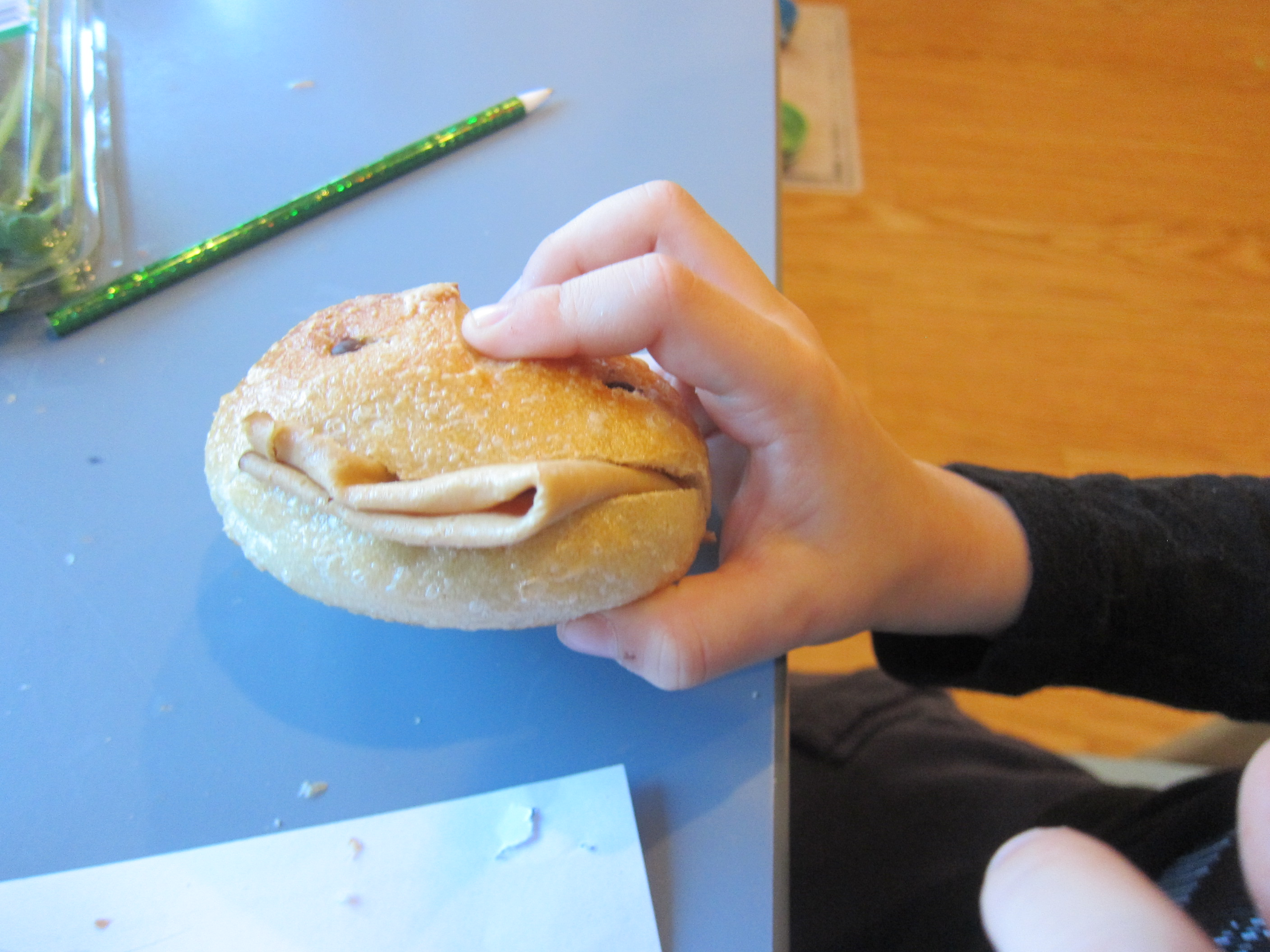 Bread Roll Puppet (2)