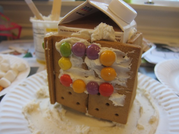 Insta-Graham Houses (5)